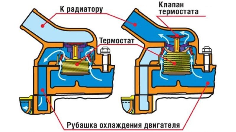 Термостат в закрытом и открытом положениях